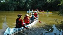 Canoeing Day Trip from Targu Mures, Targu Mures