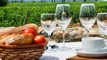 Half-Day Small-Group Wine Tasting and Brunch Tour from Girona