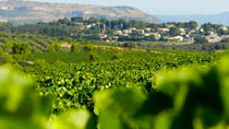 Small-Group Languedoc Wine and Olive Tour with Lunch from Montpellier, Montpellier, Wine Tasting & ...