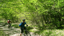 Private Cycling Tour in Rkoni from Tbilisi, Tbilisi, Bike & Mountain Bike Tours