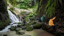 3-Day Apuseni Natural Park Private Tour from Oradea, Oradea, Multi-day Tours