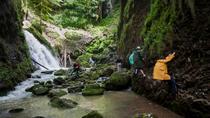 3-Day Apuseni Natural Park Private Tour from Timisoara, Timisoara, Multi-day Tours