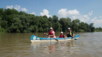 Canoe Day Tour on Mures River from Arad, Arad