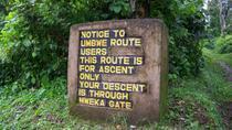 6-Day Kilimanjaro climbing adventure: The Umbwe route via Barafu and Barranco Camps, Arusha,...