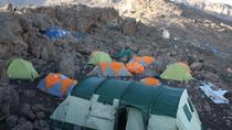 7-Day Lemosho Glades Camp route via Barafu to Kilimanjaro , Arusha, Hiking & Camping