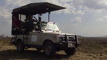 2 Days safari to Mikumi National Park, Dar es Salaam, Attraction Tickets