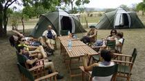 3 Days Safari to Mikumi - CAMPING, Dar es Salaam, Hiking & Camping