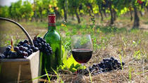Private Wine Tour to Kakheti from Tbilisi, Tbilisi, Private Sightseeing Tours