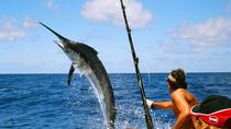 Big Game Fishing All Inclusive Tour with Lunch from Split, Split, Fishing Charters & Tours