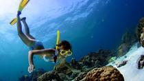 Discovery Snorkeling Adventure from Split, Split, Snorkeling