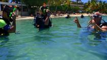 Discover Scuba Diving, St Thomas, Scuba Diving