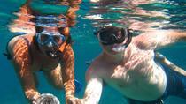 Snorkel Tour, St Thomas, Snorkeling