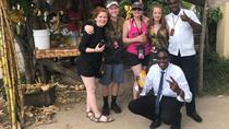 Montego Bay High light day tours, Montego Bay, Private Sightseeing Tours