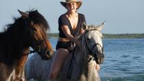 Full Day African Beach Safari on Horseback, Mozambique, Horseback Riding