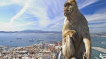 Gibraltar Full Day Tour from Seville, Seville, Full-day Tours