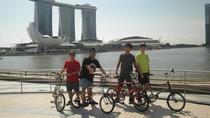 Bikes & Bites, Singapore, City Tours