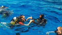 Discover Scuba diving from Chania (beginners), Chania, Scuba Diving