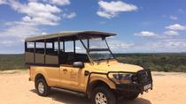 Full Day Kruger Safari, Kruger National Park, 4WD, ATV & Off-Road Tours
