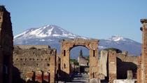 Private Tour: Pompeii and Naples Full-Day Trip from Rome - Pizza Lunch Included, Rome, Private Day...