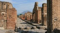 Small-Group Tour: Pompeii and Naples from Rome with Lunch in a Biologic Farm, Rome, Rail Tours