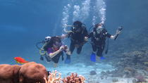 Daily dive with 2 dive with equipment, Hurghada, Other Water Sports