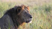 5 Days Safari, Arusha, Cultural Tours
