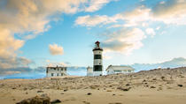 Sunset Bay Cruise includes Penguin tour and Craft Beer Tasting in Port Elizabeth, Port Elizabeth, ...