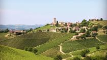Private Barolo Wine Tour, 1 full day for Discover vineyards and cellars, Turin, Wine Tasting &...