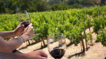 two-day tour, one in the Barbaresco area and the second day in the Barolo area, Asti, Food Tours