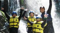 Canyoning Tour in Tenkawa-mura, Osaka, Climbing