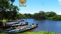 Pampas in Rurrenabaque - 3 Days, Bolivia, 4WD, ATV & Off-Road Tours