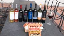 Wine, Singani & Cheese Tasting Tour - Half Day - Private Service, Potosí, Cultural Tours