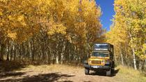 Gold Belt Scenic Byway Jeep Tour from Cañon City, Cañon City, 4WD, ATV & Off-Road Tours