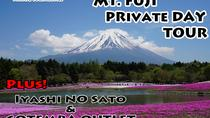 FULL DAY MT FUJI TOUR WITH GOTEMBA OUTLET AND IYASHI NO SATO, Tokyo, Private Sightseeing Tours
