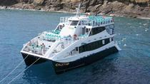 Molokini Snorkeling Adventure Aboard the Calypso, Maui
