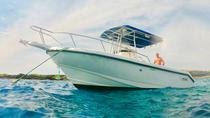 Private Charter, Big Island of Hawaii, Private Sightseeing Tours