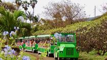 The Tropical Express at Maui Tropical Plantation, Maui, Plantation Tours
