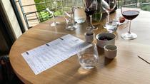 Stellenbosch Wine Bespoke Full Day Tour, Stellenbosch, Full-day Tours