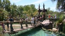 Cango Wildlife Ranch Standard Admission Ticket, Garden Route, Attraction Tickets