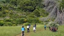 Kayak and Bike Tour to Sipan island from Lopud, Dubrovnik, Bike & Mountain Bike Tours