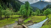 5 Nights & 6 Days Private Tour - Kashmir, Srinagar, Private Sightseeing Tours