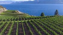 Painting Class Experience at Okanagan Vineyard with Optional Lunch and Winery Tour, Valle di ...