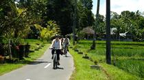 Best Ubud Cycling & Swing with Complimentary Lunch, Ubud, City Tours