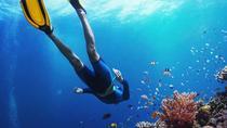 Full-day diving trip from Hurghada, Hurghada, Scuba Diving