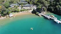 Picton shore excursions: Marlborough Sounds Cruise and explore Lochmara, Picton, Day Trips