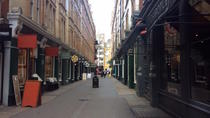 Private 3-hour Harry Potter Walking Tour of London, London, Private Sightseeing Tours