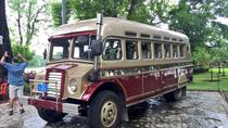 Yangon Sightseeing with elephant coach, Yangon, Cultural Tours