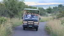 One night two day Pilanesberg National Park safari and open vehicle game drives, Johannesburg, ...