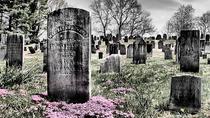 Halloween Historic Cemetery Tour , San Antonio, Halloween