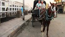 City tour by horse carriage, Aswan, Horse Carriage Rides
